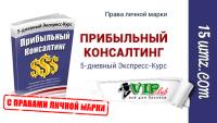 Прибыльный консалтинг (курс с правами личной марки)