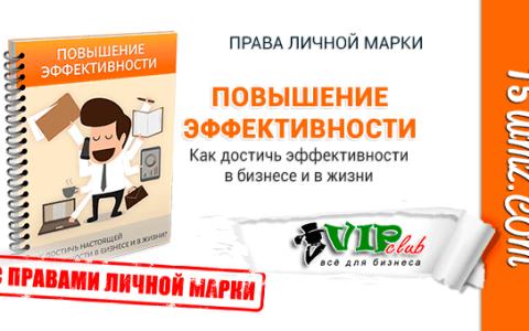 Повышение эффективности (книга с правами личной марки)