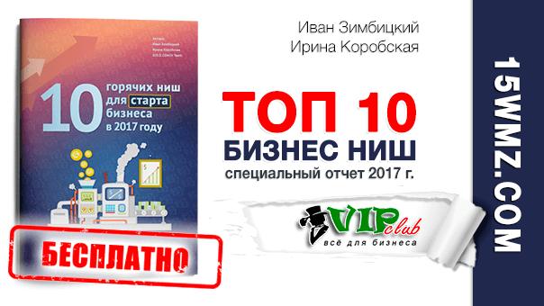 ТОП 10 Бизнес ниш 2017 г.